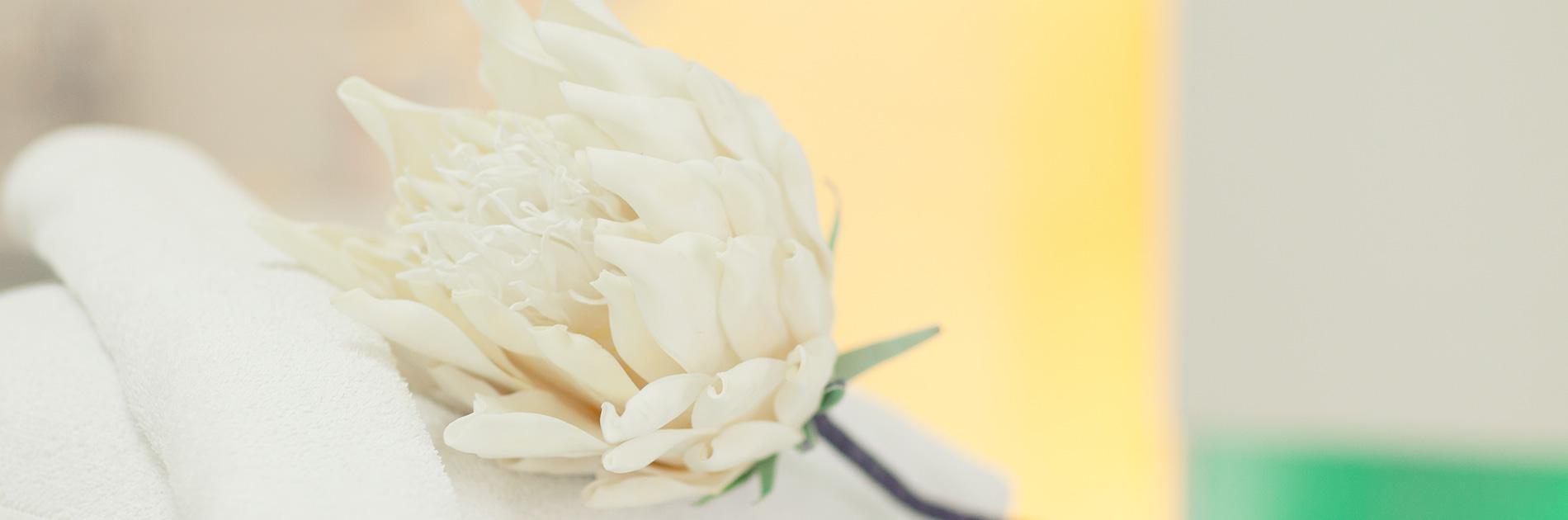 Liege-mit-blume-kosmetik-studio-carola-kiesel-stuttgart-beauty-balance